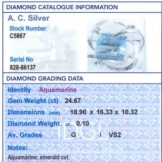 24.67ct Aquamarine and 0.10ct Diamond and 18ct White Gold Brooch - Vintage Circa 1970