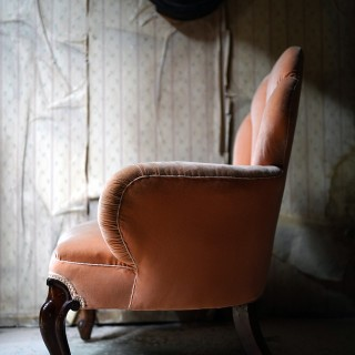 An Early Victorian Mahogany & Peach Velvet Upholstered Shell Backed Chair c.1840