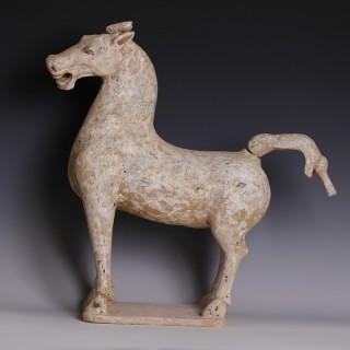 Han Polychrome Terracotta Horse Sculpture
