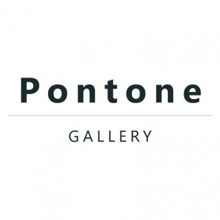 Dominic Pontone
